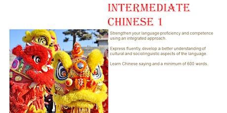 Conversational Chinese(Mandarin) Intermediate 1 Trial tickets