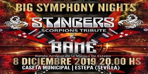 BIG SYMPHONY NIGHTS - STINGERS & BAME
