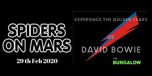 Spiders on Mars A Tribute to David Bowie