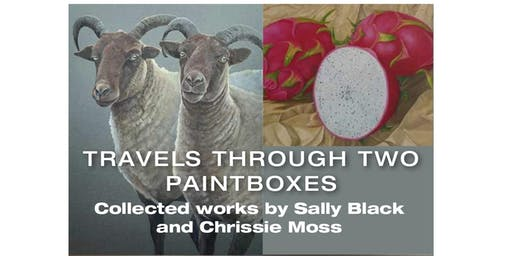 'Travel's through two paintboxes' - Artwork by Sally Black & Chrissie Moss