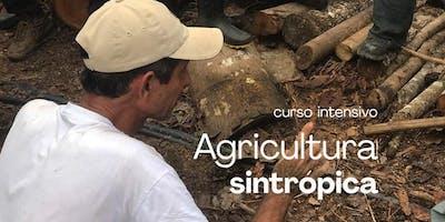 Curso de Agricultura Sintrópica com Henrique Sousa