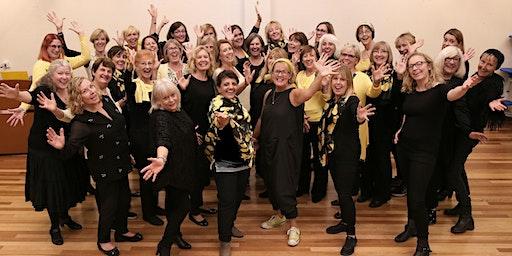 Lemon Tuesday's Christmas Concert!