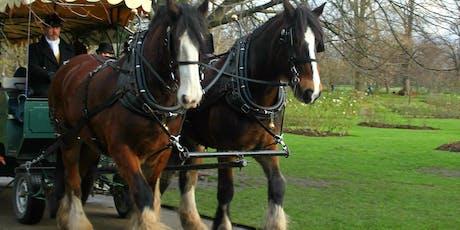 Festive carriage rides, Sat & Sun 7-8, 14-15, 21-22 Dec, 10am-4pm tickets