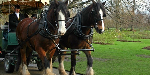 Festive carriage rides, Sat & Sun 7-8, 14-15, 21-22 Dec, 10am-4pm