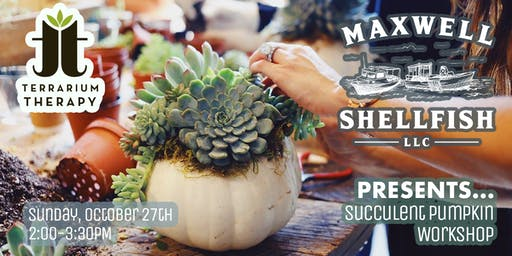 RAIN DATE (10-27) Succulent Pumpkin Workshop at Maxwell Shellfish