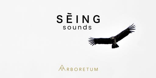 SĒING Sounds   Sound Meditation with Gongs (Gong Bath Sound Healing)