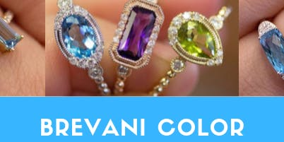 Brevani Color Trunk Show