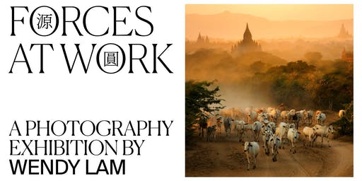 FORCES AT WORK: a photography exhibition by Wendy Lam