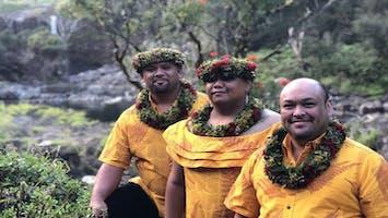 Na Palapalai Hawaiian Music & Dance Concert