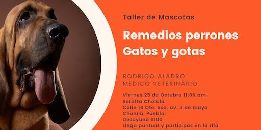 Taller de mascotas * Remedios Perrones, Gatos y Gotas *