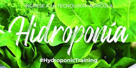 HIDROMDQ2020 :: CURSO INTENSIVO DE HIDROPONIA. MAR DEL PLATA  6/2/20 entradas