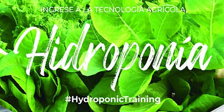Curso Intensivo de Cultivo sin Suelo e Hidroponía + Hidrotour Mar del Plata entradas