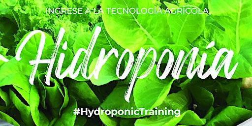 Curso Intensivo de Cultivo sin Suelo e Hidroponía + Hidrotour Mar del Plata
