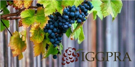 IGGPRA Seminar #8: Winter Rain Forecast & Groundwater Sustainability