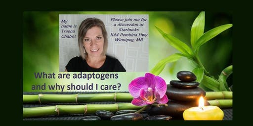 What are Adaptogens and Why Should I Care?
