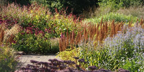 Pensthorpe Natural Park Photo Walk tickets
