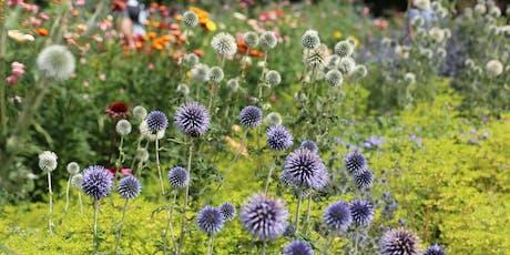 Gabriel's Garden Late Summer Photo Walk tickets