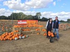 Pumpkin Patch Farms Ltd - T/A Foxes Farm Produce logo