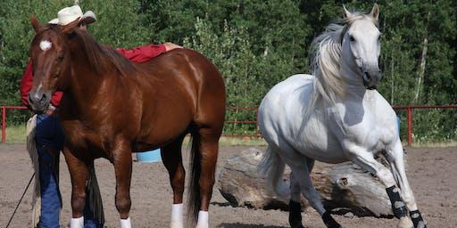 The Horse Ranch - Open House &  Fun!draiser