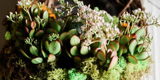 Living Wreath - Succulent Arrangement