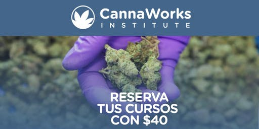RESERVA | Cannabis Training Camp | 16 & 17 de Noviembre | CannaWorks Institute