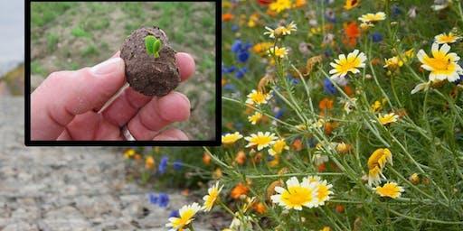 Wildflower Seed Bomb Workshop