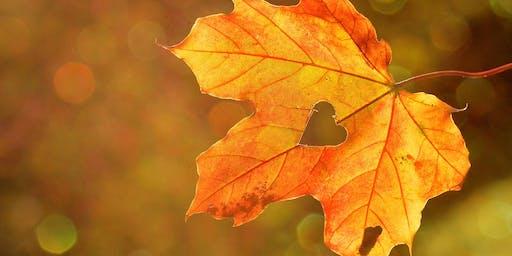 Open day: autunno amico della salute