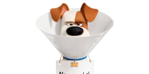 The Secret Life of Pets 2 (U)