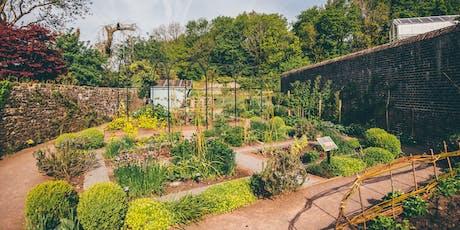Planting Design for Beginners Course / Cwrs Dylunwaith Plannu i Ddechreuwyr tickets