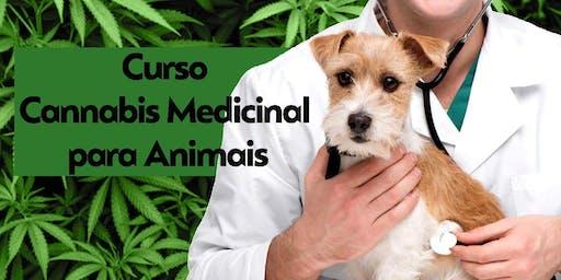 1º Curso de Cannabis medicinal na Medicina Veterinária