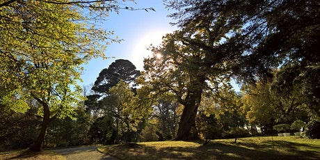 Your Partnerships Plymouth - Mindful Netwalking with Claire @ Saltram tickets