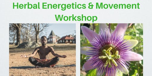 Herbal Energetics & Movement Workshop