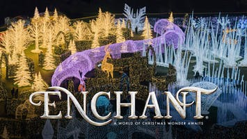 Enchant Christmas - World's Largest Christmas Light Maze & Market