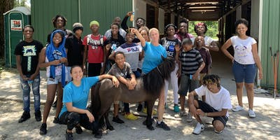 Rescued Horses Empowering Parents and Kids