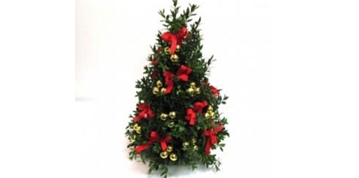 Fresh Boxwood Tree Floral Therapy Workshop (12-15-2019 starts at 2:00 PM)