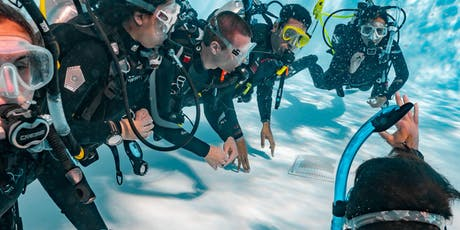 PADI Instructor Development Course (IDC) tickets