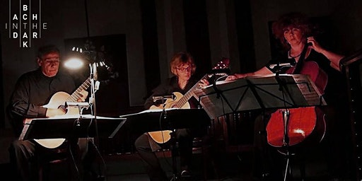 Bach in the Dark – Cello and Guitars – 2020 series