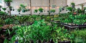 Sydney - Huge Indoor Plant Warehouse Sale - 70s Retro...