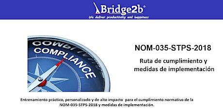 NOM-035-STPS-2018 | Ruta de cumplimiento y medidas de implementación boletos