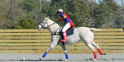 Halloween Cup presented by Congressional Polo Club