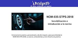 NOM-035-STPS-2018 | Sensibilización e Introducción a...