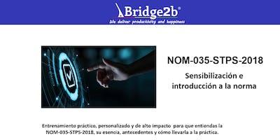 NOM-035-STPS-2018 | Sensibilización e Introducción a la norma
