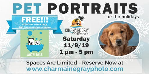 Pet Portraits for the Holidays
