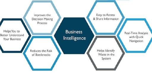 Business Intelligence & Data Analytics using Power BI, Sydney