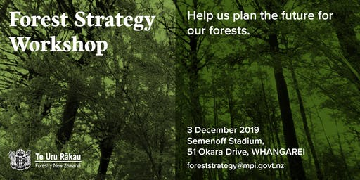Forest Strategy Workshop
