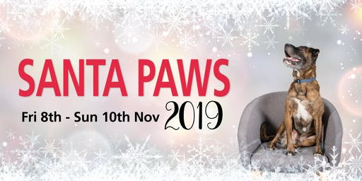 RSPCA Santa Paws 2019 - Saturday - Room 1