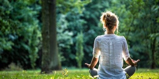 Free Meditation Classes