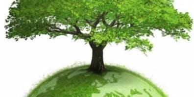 Earth Element Meditation