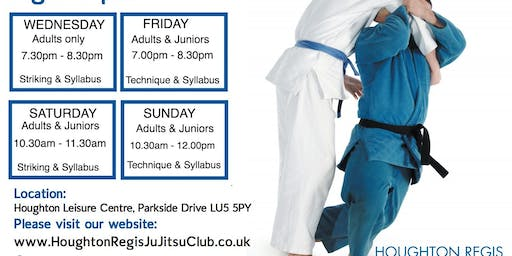 JU JITSU ADULTS ONLY,    1st lesson FREE