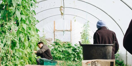 Volunteer Walkaround: Discover opportunities on St Ann's Allotments tickets